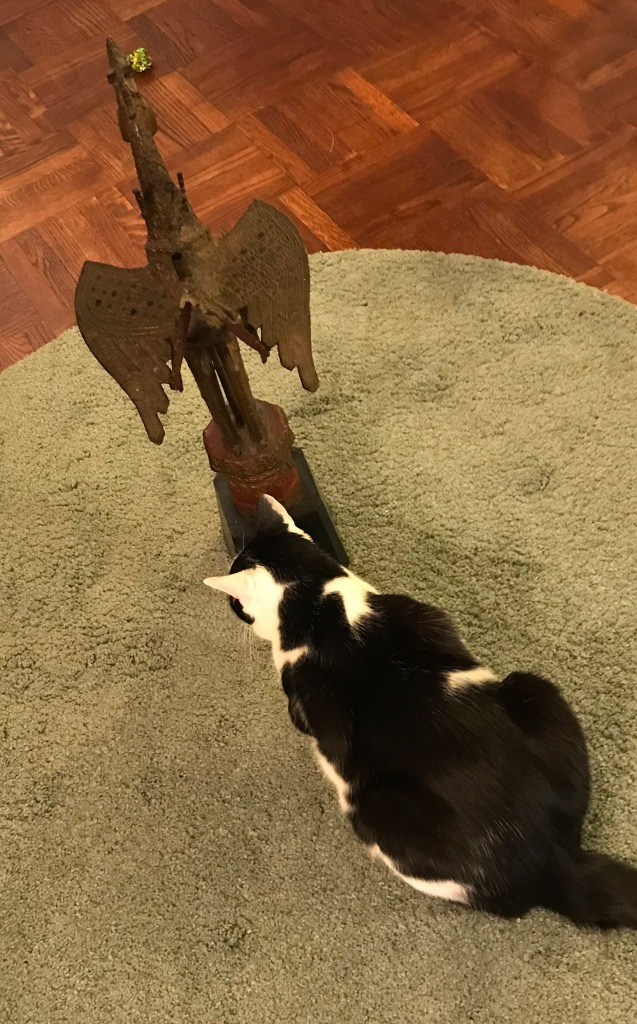 My cat with dragon sculpture